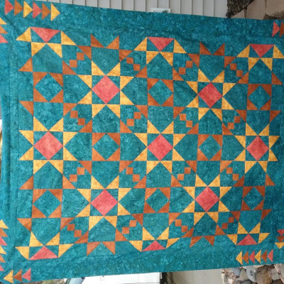 Top completed, but will be quilted before our local fair end of April!  This was